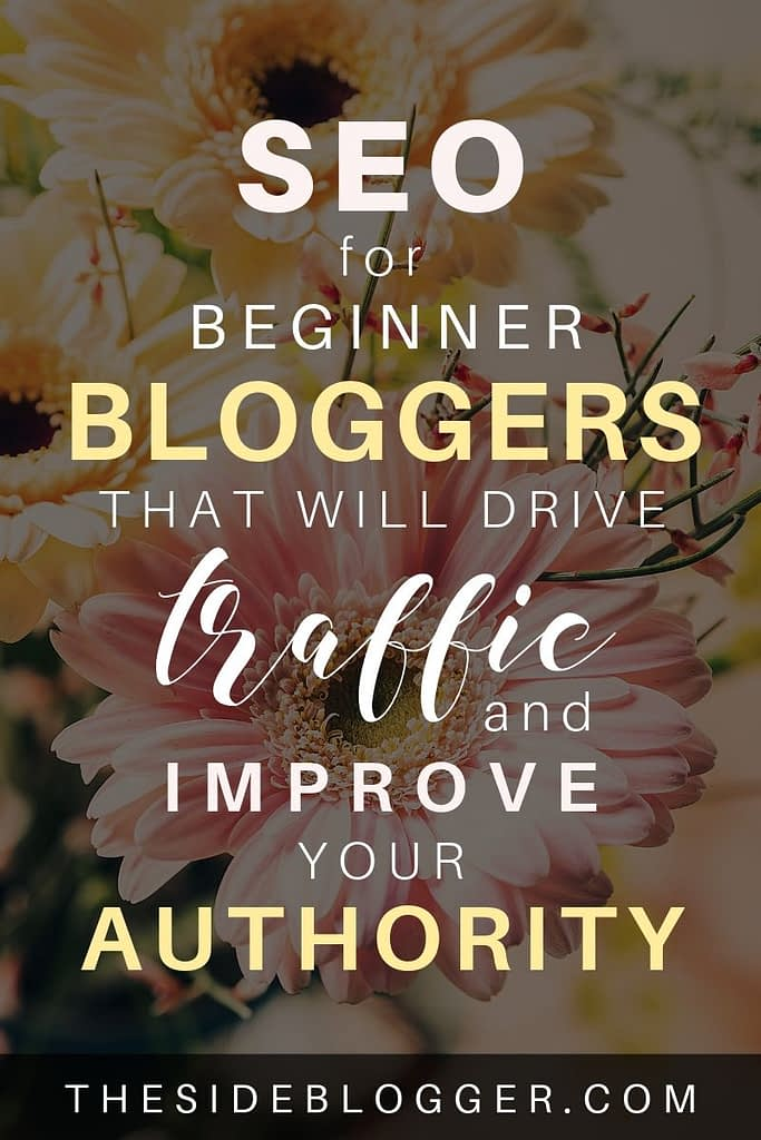 SEO techniques for beginners that will drive traffic to your blog, increase visitors, and improve domain authority over time.