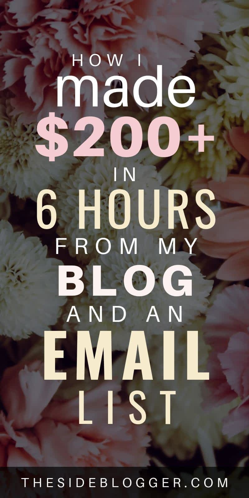 How I made 200 in less than 6 hours, with my email list.